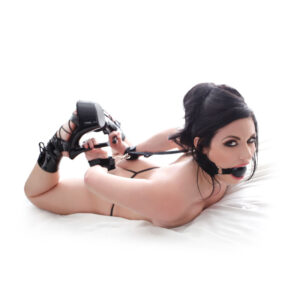 Fetish Fantasy Series  Gag And Wrist Restraint